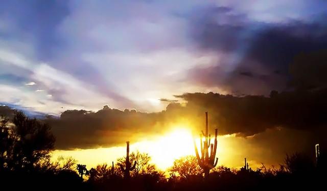 Brightly_Shining_Through_Storm_by_BeautifulDragon322